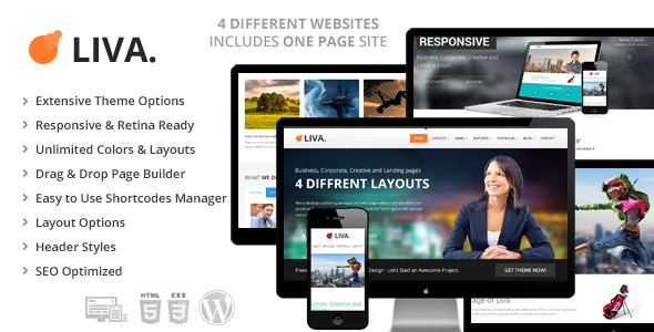Liva - Retina Ready Multipurpose WordPress Theme