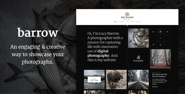 Barrow - Retina-Ready WP Photography Portfolio Theme