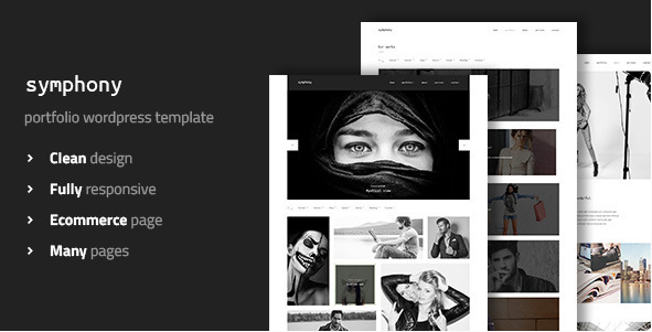 Symphony - Clean Photography WordPress Template