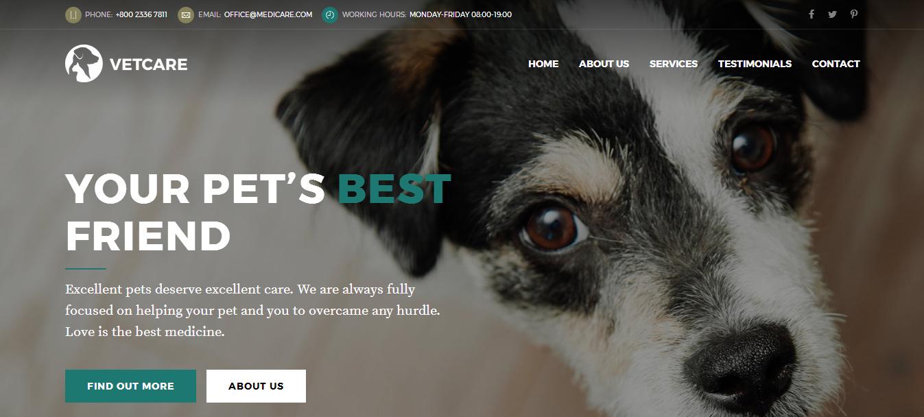 wordpress veterinary themes