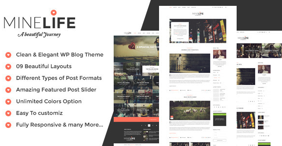 Instagram Themes for WordPress