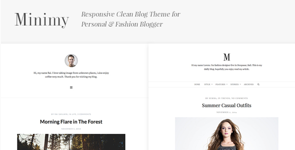Post Format WordPress Themes