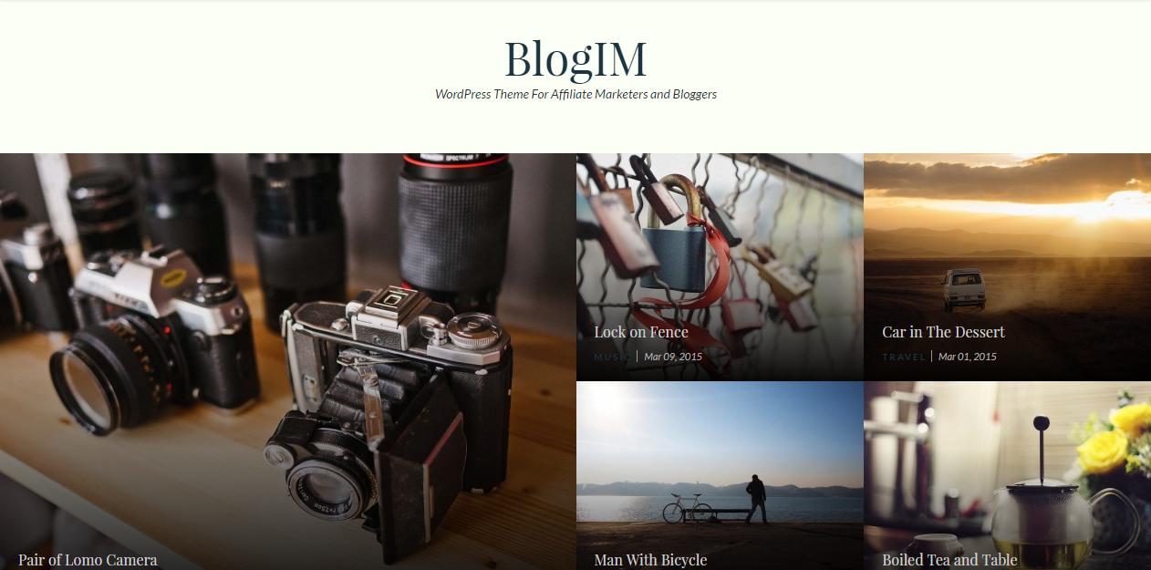 Blogim