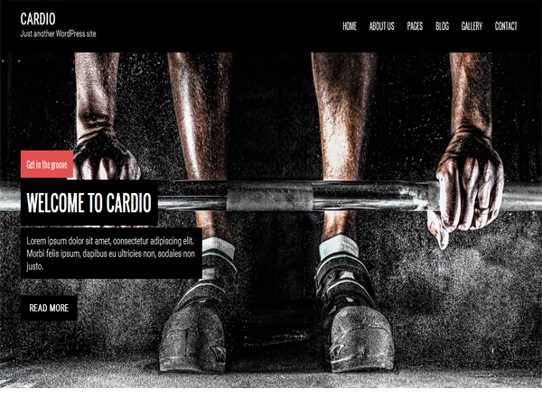 Cardio - Free Fullscreen WordPress Themes